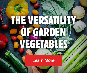 Learn more about The Versatility Of Garden Vegetables