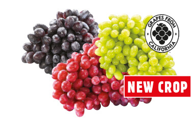 Extra Large Green, Red or Black Seedless Grapes