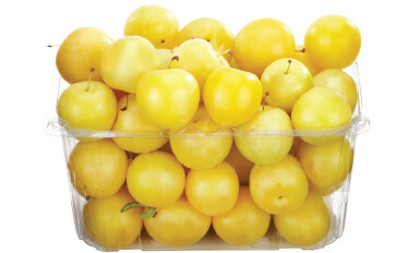 Yellow Plums