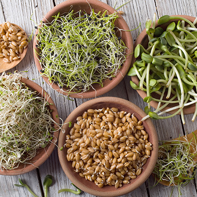 Get more with sprouted grains